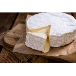Camembert AOP Normandie